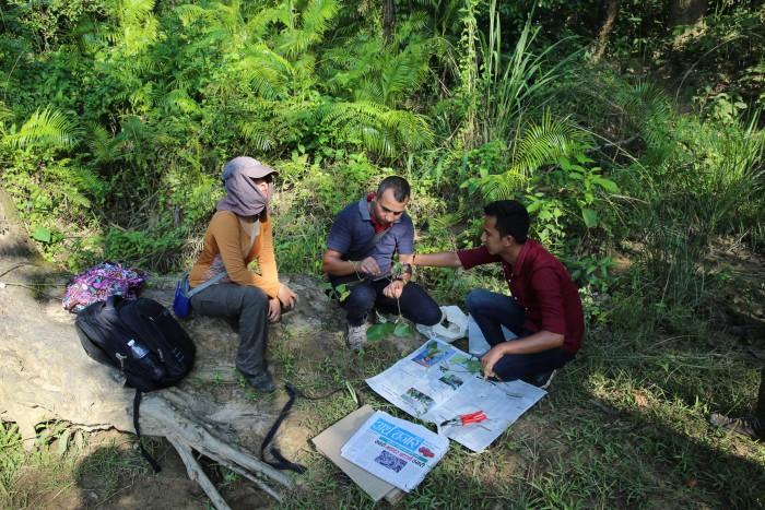 At Chitwan National Park, Deepa Singh Shrestha, Santosh Sharma and Suresh Malasi, prepares a herbarium specimen of Oryza officinalis.